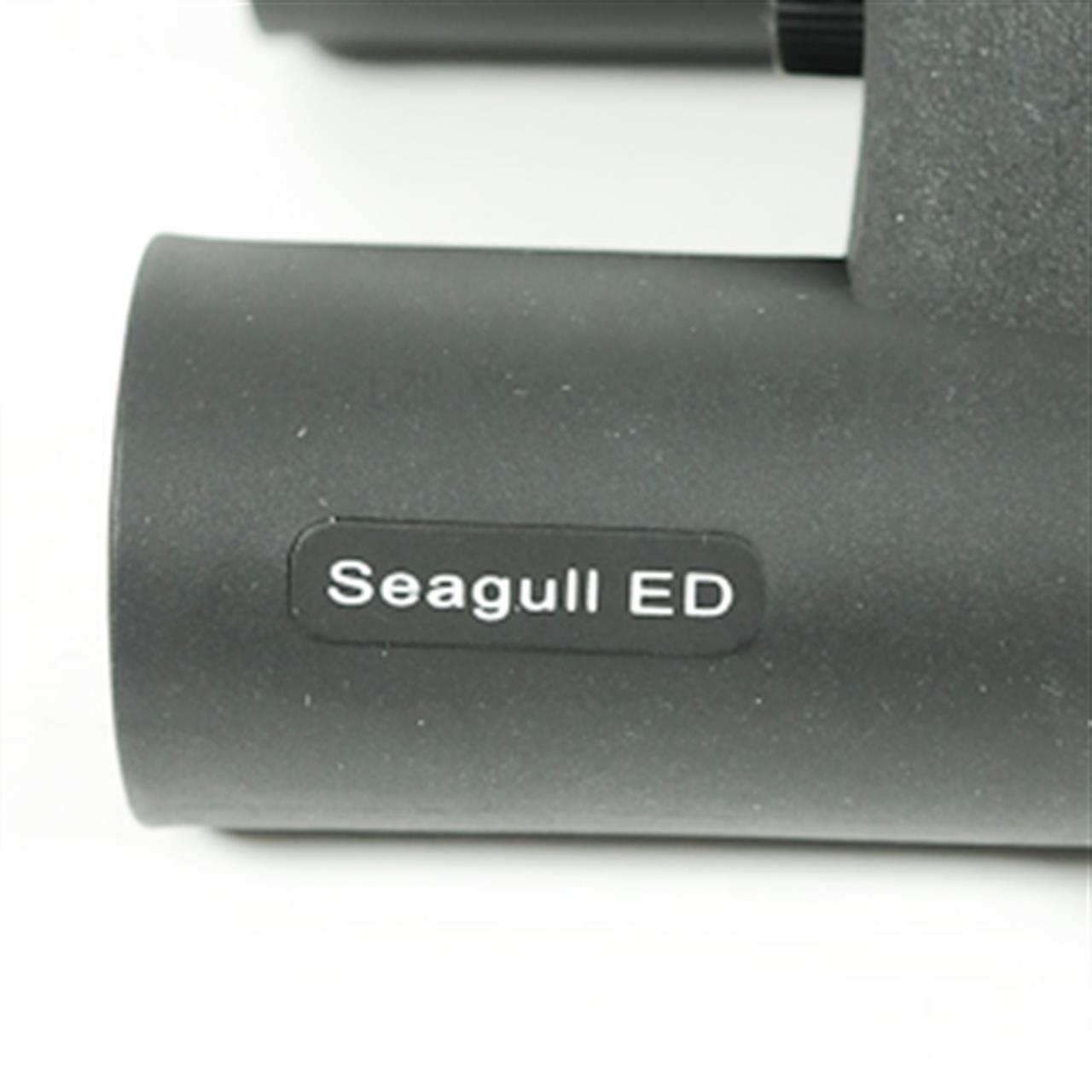 20006181__bynolyt_seagull_8x25_ed_afb3.jpg